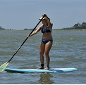 Paddleboard Rental